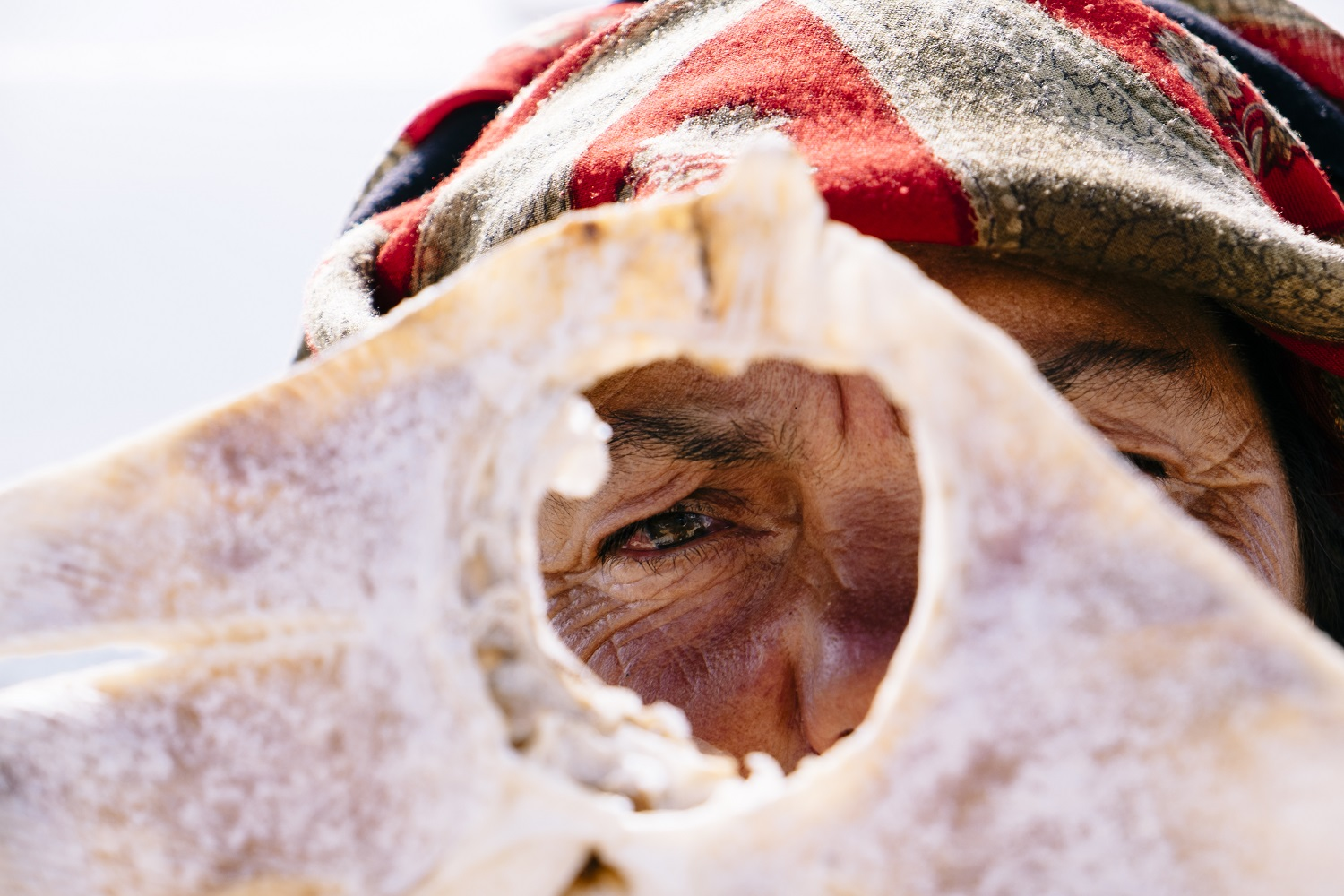 Dona Francelina is one of the most famous dried fish vendors in Nazaré, Portugal. For this portrait she peeked through a dried ray fish.