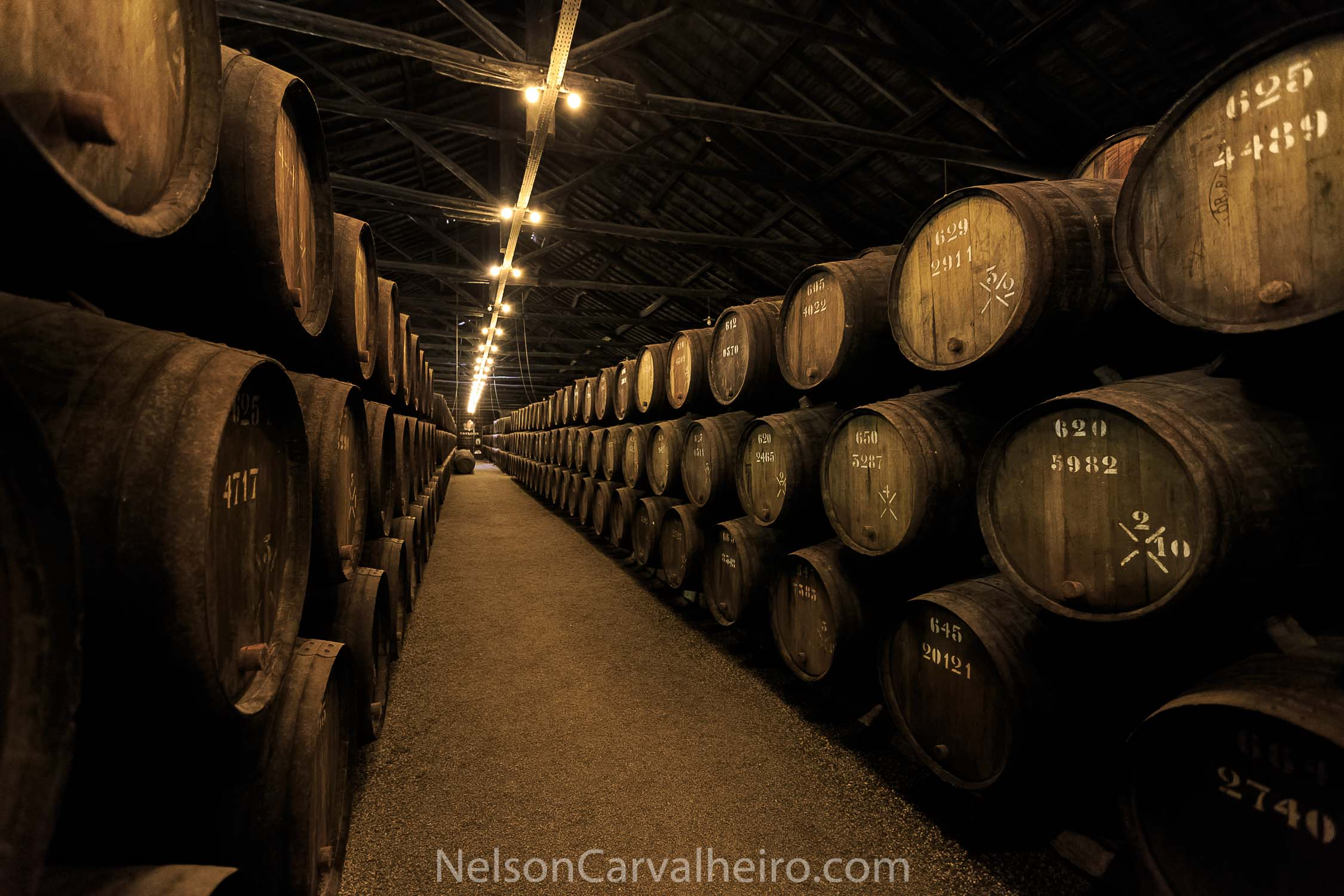 Nelson_Carvalheiro_Portuguese_Taylors_Port_Wine-2