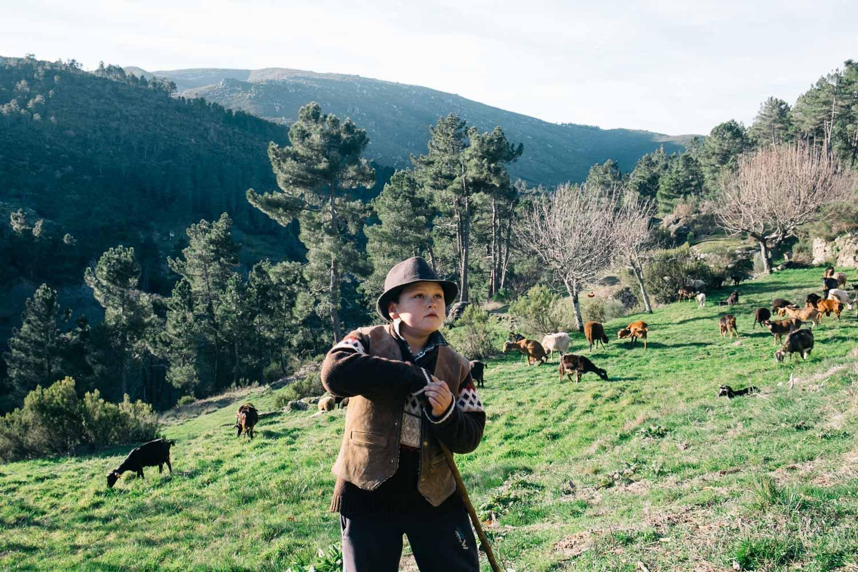Serra da Estrela - Sabugueiro - Young Herder