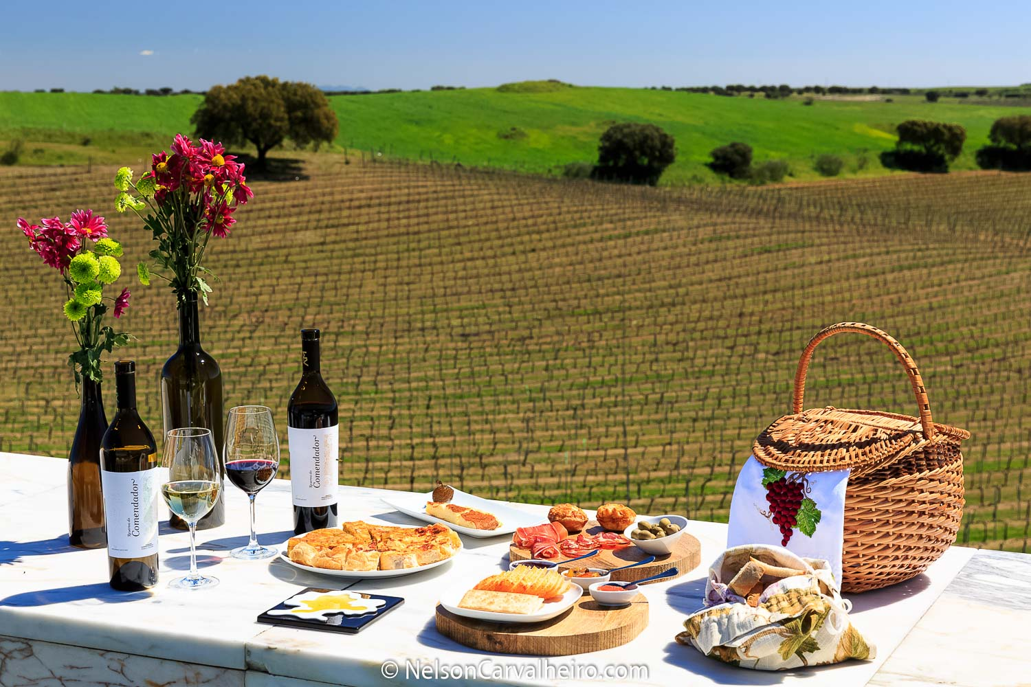Nelson_Carvalheiro_Alentejo_Wine_Travel_Guide_Adega_Mayor-10