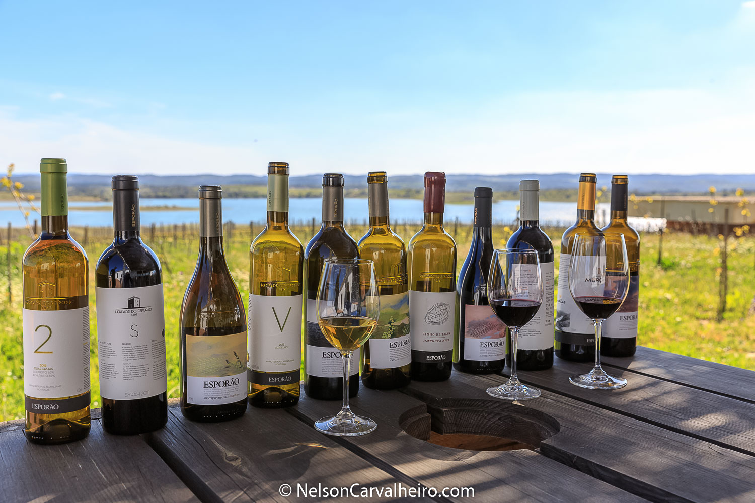 Nelson_Carvalheiro_Alentejo_Wine_Travel_Guide_Herdade_do_Esporão