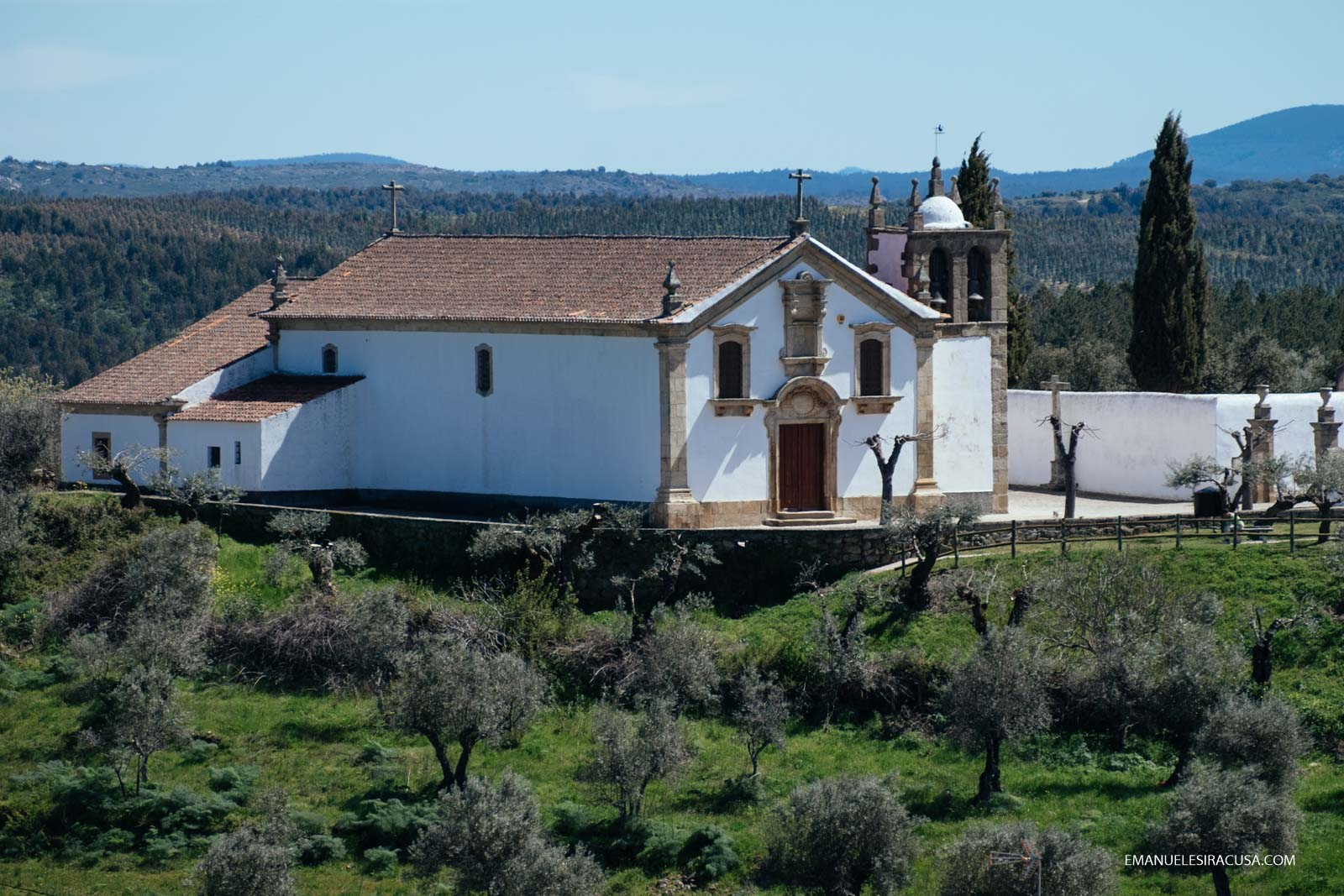 Olive trees and a church in Proença a Velha, 2016