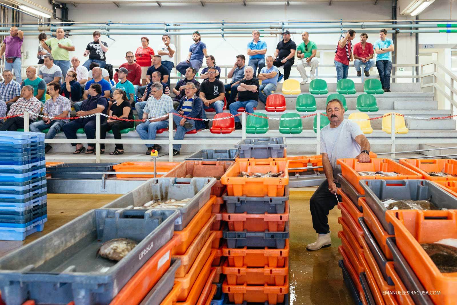 Emanuele Siracusa - Centro de Portugal - Oeste - Peniche Fishing Auction Sale-3